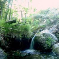 Cailho la cascade